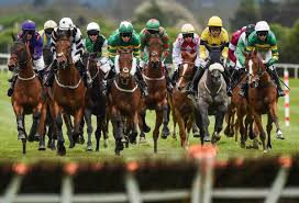 Many Eminent Horse Races in Australia